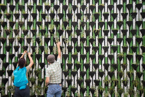 Vertical farming operation